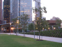 Downtown Houston 2
